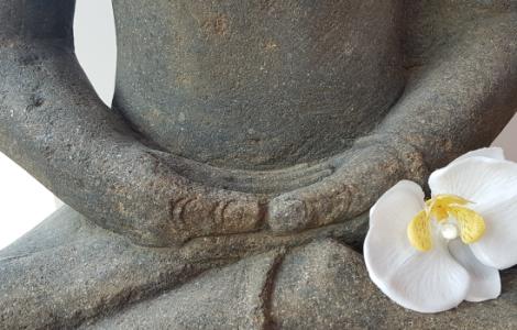 formatvorlage-für-Bilder-Buddha-630x350px.png